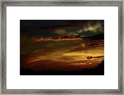 Brush Strokes Framed Print by Tanya Chesnell