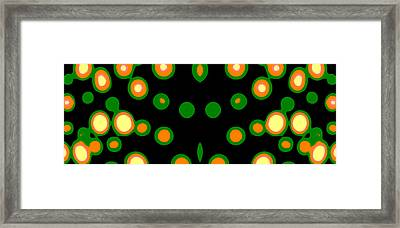 Bubbles No.2 Framed Print by Danny Lally