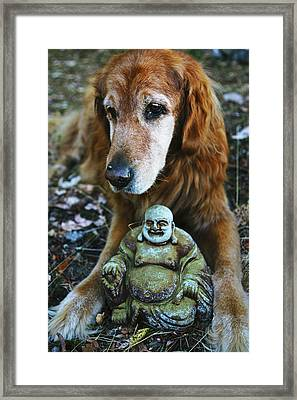 Buddha And The Old Boy Framed Print by Lorraine Devon Wilke