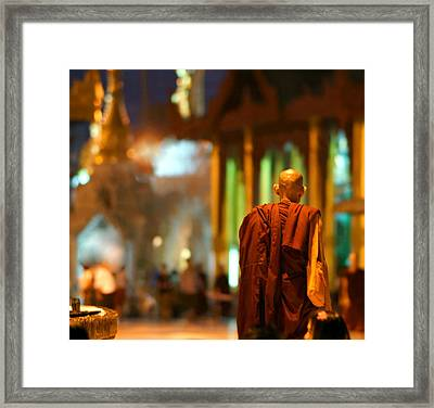 Buddhist Monk In The Shwedagon Pag Framed Print by Chantal