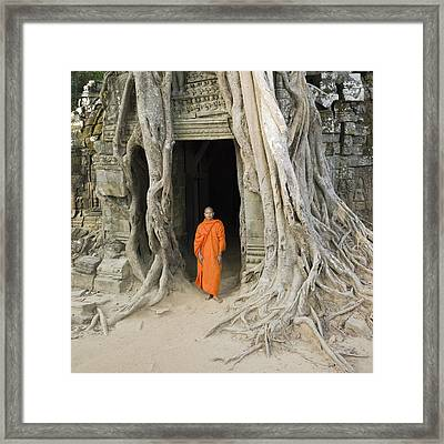 Buddhist Monk Standing Next To Tree Roots Framed Print by Martin Puddy