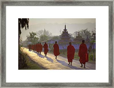 Buddhist Monks Walking Down Road, Rear View Framed Print by Daryl Benson