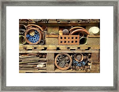 Bug Home Framed Print by Lee Rees