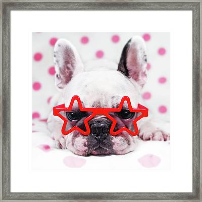 Bulldog With Star Glasses Framed Print by Retales Botijero