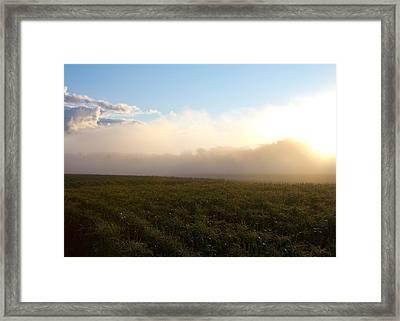 Burning Fog Framed Print by Tim Fitzwater