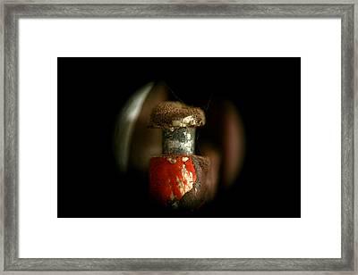 Butt Bolt Framed Print by Lon Casler Bixby