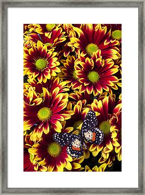 Butterfly On Yellow Red Daises  Framed Print by Garry Gay
