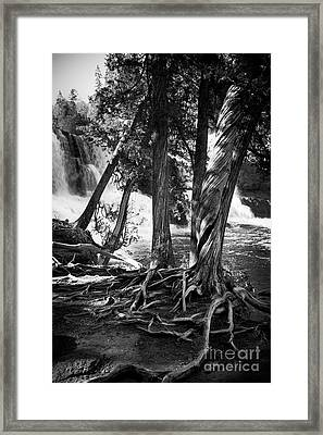 By The Falls Framed Print by Perry Webster