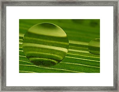 C Ribet Orbscapes Green Jupiter Framed Print by C Ribet