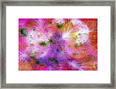 Cabbage Moon Framed Print by Judi Bagwell