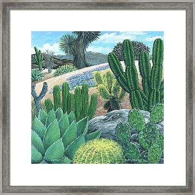 Cactus Garden Framed Print by Snake Jagger