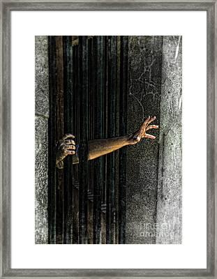 Caged 3 Framed Print by Jill Battaglia
