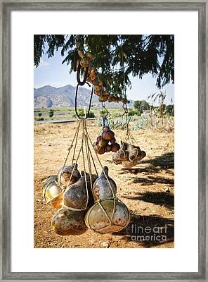 Calabash Gourd Bottles In Mexico Framed Print by Elena Elisseeva