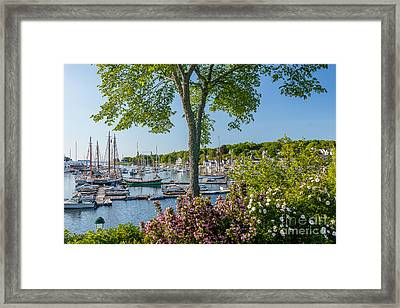 Camden Spring Framed Print by Susan Cole Kelly