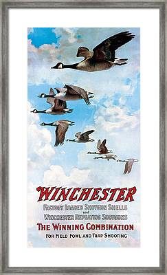 Canada Geese In Flight Framed Print by C Everitt Johnson