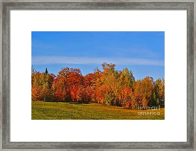 Canada In Colors Framed Print by Aimelle