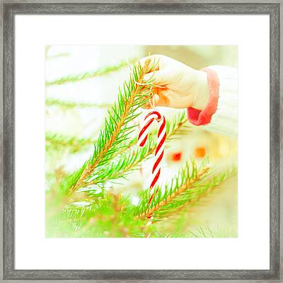 Candy Cane Framed Print by Tom Gowanlock