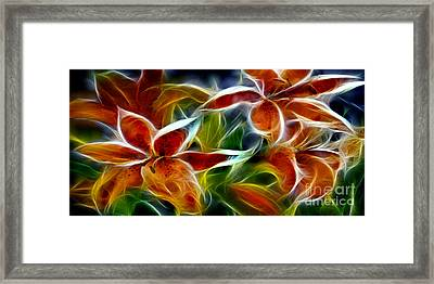 Candy Lily Fractal  Framed Print by Peter Piatt