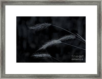 Can't Be Broken Framed Print by Kim Henderson
