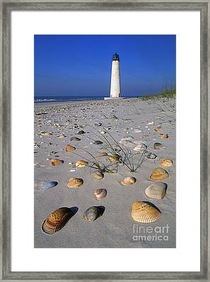 Cape Saint George Lighthouse 2 - Fs000777 Framed Print by Daniel Dempster