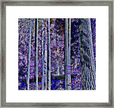 Capilano Dark Framed Print by Randall Weidner