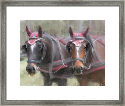 Carriage Horses Pleasure Pair Framed Print by Connie Moses