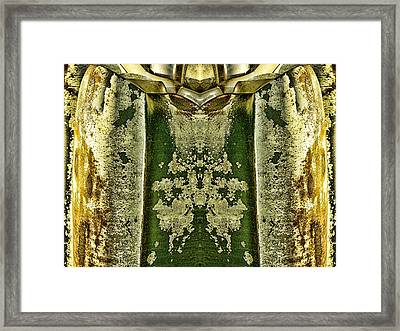 Carschach008 Framed Print by Tony Grider