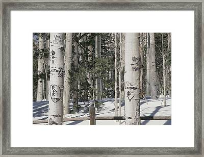 Carved Initials In The Framed Print by Stacy Gold