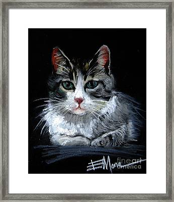 Cat 2 Framed Print by Mona Edulesco