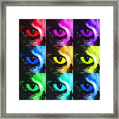 Cat's Eye In Hues Framed Print by Betsy C Knapp