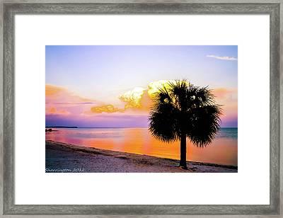 Cedar Key Sunset Framed Print by Shannon Harrington