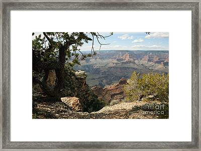 Cedar Ridge - Grand Canyon Framed Print by Juan Romagosa