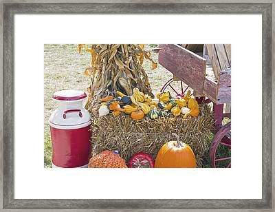Celebrating Fall Framed Print by Wayne Stabnaw