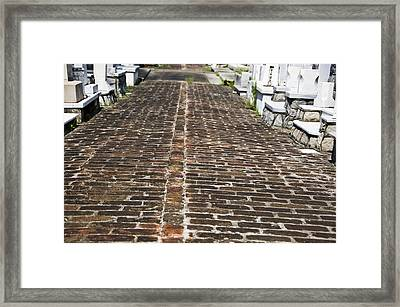 Cemetary Path Framed Print by Ray Laskowitz