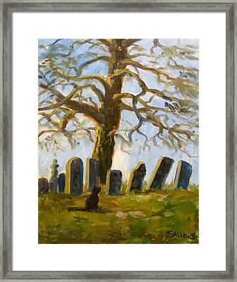 Cemetery Road Framed Print by Nora Sallows