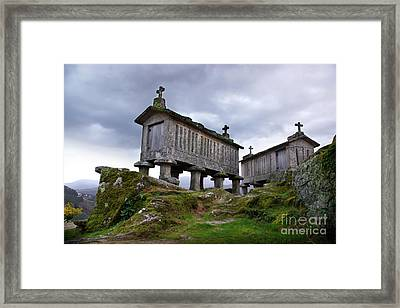 Cereal Keepers Framed Print by Carlos Caetano