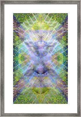 Chalicell Trees Of Light Over Garden Green Framed Print by Christopher Pringer