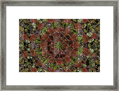Chaos Framed Print by Steve K