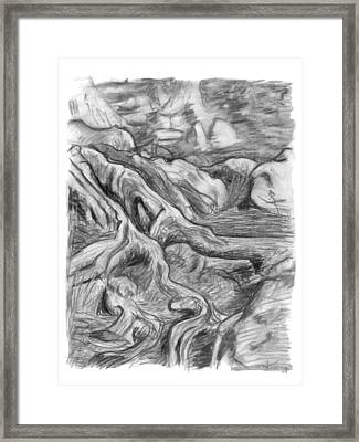 Charcoal Drawing Of Gnarled Pine Tree Roots In Swampy Area Framed Print by Adam Long