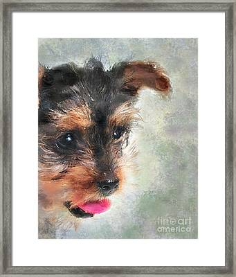 Charming Framed Print by Betty LaRue
