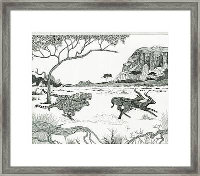Cheetah Twins  Framed Print by Doug Hiser