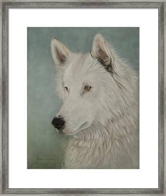 Chenoa Framed Print by Teresa LeClerc