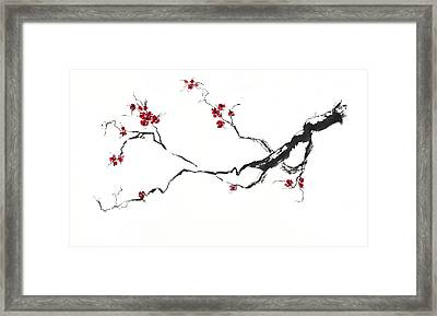 Cherry Blossom Framed Print by Jitka Krause