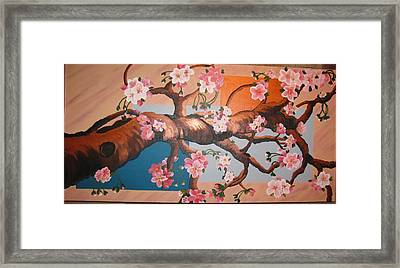 Cherry Blossoms Framed Print by Sylvia Wanty