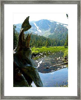 Cherry Lake Framed Print by Chad Rice
