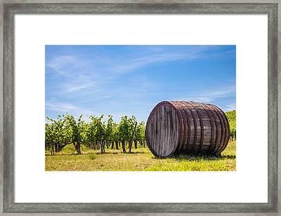Chianti Wineyard Framed Print by Paolo Modena