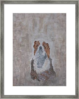 Chiari Dog Framed Print by Roy Penny