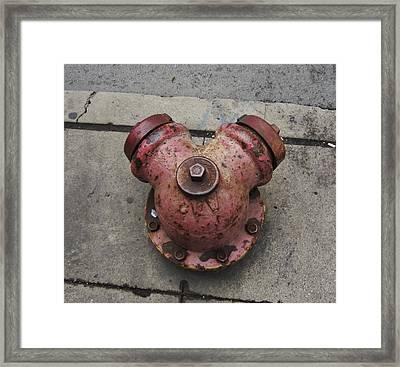 Chicago Hydrant Framed Print by Todd Sherlock