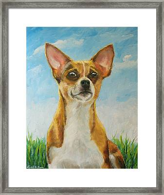 Chihuahua Framed Print by Daniel W Green