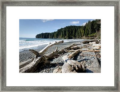 China Driftwood China Beach Juan De Fuca Provincial Park Bc Framed Print by Andy Smy